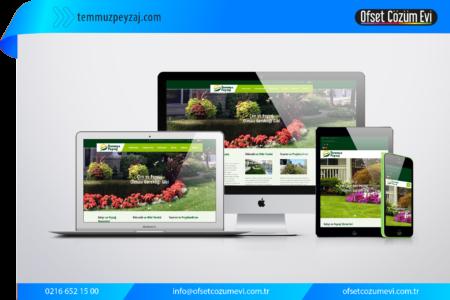 web_site4